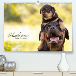 Hunde 2020 – Treue Begleiter (Premium, hochwertiger DIN A2 Wandkalender 2020, Kunstdruck in Hochglanz) von Pohle,  Janice