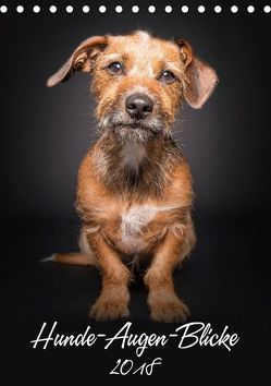 Hunde-Augen-Blicke (Tischkalender 2018 DIN A5 hoch) von Gareis,  Silke