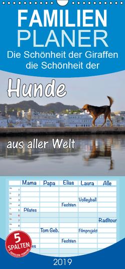 Hunde aus aller Welt – Familienplaner hoch (Wandkalender 2019 , 21 cm x 45 cm, hoch) von Blümm,  Florian