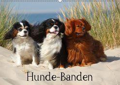 Hunde-Banden (Wandkalender 2019 DIN A2 quer) von Wegner,  Petra