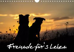 Hunde – Freunde für's Leben (Wandkalender 2020 DIN A4 quer) von Schulz,  Elke