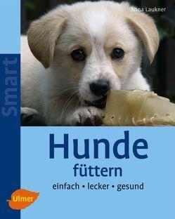 Hunde füttern von Laukner,  Anna