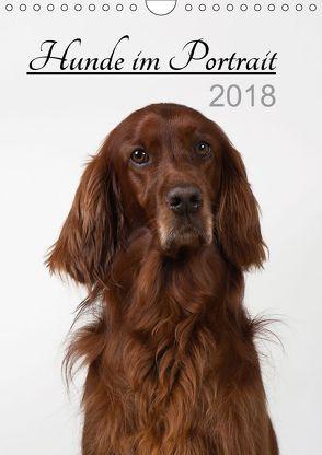 Hunde im Portrait (Wandkalender 2018 DIN A4 hoch) von Bollich,  Heidi
