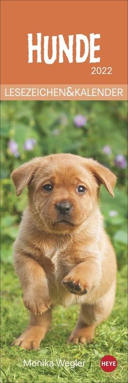 Hunde Lesezeichen & Kalender 2022 von Heye, Wegler,  Monika