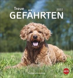 Hunde Postkartenkalender – Treue Gefährten 2022 von Heye