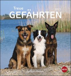 Hunde Postkartenkalender – Treue Gefährten Kalender 2021 von Heye