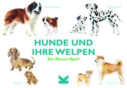 Hunde und ihre Welpen. von Aguado,  Emma, George,  Michael