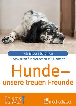 Hunde – unsere treuen Freunde von Rosentreter,  Sophie
