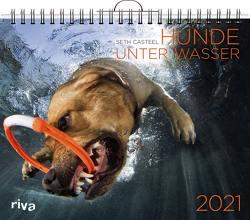 Hunde unter Wasser 2021 von Casteel,  Seth