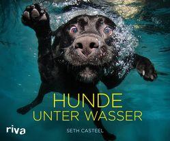 Hunde unter Wasser von Casteel,  Seth