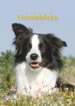 Hundeblicke 2021 – Wand-Kalender – Tier-Kalender – A&I – 29,7×42