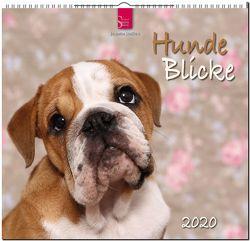 HundeBlicke von Hutfluss,  Jeanette