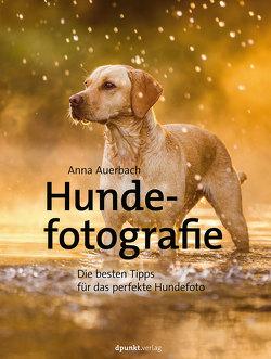 Hundefotografie von Auerbach,  Anna