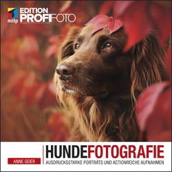 Hundefotografie von Geier,  Anne