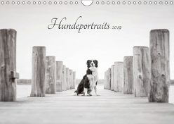 Hundeportraits 2019 (Wandkalender 2019 DIN A4 quer) von Pohle,  Janice