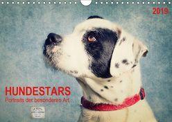 Hundestars – Portraits der besonderen Art (Wandkalender 2019 DIN A4 quer) von DESIGN Photo + PhotoArt,  AD, Dölling,  Angela