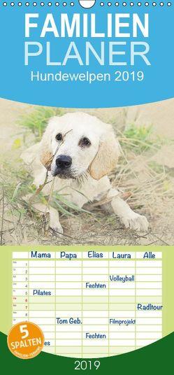 Hundewelpen 2019 – Familienplaner hoch (Wandkalender 2019 , 21 cm x 45 cm, hoch) von Redecker,  Andrea