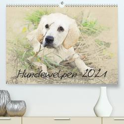 Hundewelpen 2021 (Premium, hochwertiger DIN A2 Wandkalender 2021, Kunstdruck in Hochglanz) von Redecker,  Andrea