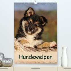 Hundewelpen (Premium, hochwertiger DIN A2 Wandkalender 2020, Kunstdruck in Hochglanz) von Menden,  Katho