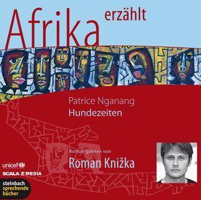 Hundezeiten – Afrika erzählt von Knižka,  Roman, Nganang,  Patrice