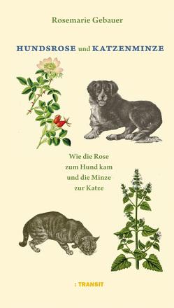 Hundsrose und Katzenminze von Gebauer,  Rosemarie