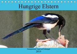 Hungrige Elstern – Faszinierende Vögel auf Futterjagd (Tischkalender 2019 DIN A5 quer) von von Loewis of Menar,  Henning