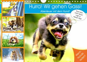 Hurra! Wir gehen Gassi! Abenteuer mit dem Hund! (Wandkalender 2020 DIN A4 quer) von Hurley,  Rose