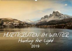 Hurtigruten im Winter – Hunting the light (Wandkalender 2019 DIN A2 quer) von Lieder,  Britta
