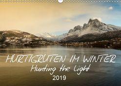 Hurtigruten im Winter – Hunting the light (Wandkalender 2019 DIN A3 quer) von Lieder,  Britta