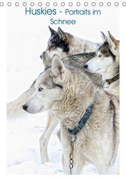 Huskies – Portraits im Schnee (Tischkalender 2019 DIN A5 hoch) von Brunner-Klaus,  Liselotte