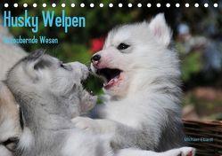Husky Welpen (Tischkalender 2019 DIN A5 quer) von Ebardt,  Michael
