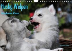 Husky Welpen (Wandkalender 2021 DIN A4 quer) von Ebardt,  Michael