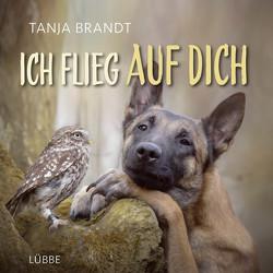 Ich flieg auf dich von Brandt,  Tanja