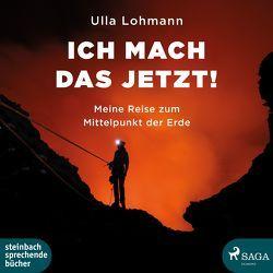 Ich mach das jetzt! von Lohmann,  Ulla, Rysopp,  Beate