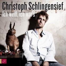 Ich weiß, ich war`s von Laberenz,  Aino, Schlingensief,  Christoph, Wuttke,  Martin