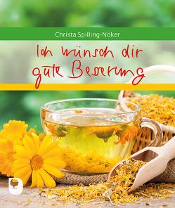 Ich wünsch dir gute Besserung von Spilling-Nöker,  Christa