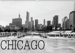 Icy Chicago (Wandkalender 2019 DIN A2 quer) von Stein,  David