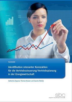 Identifikation relevanter Kennzahlen für die Vertriebssteuerung/Vertriebsplanung in der Energiewirtschaft von Kapune,  Katharina, Keusen,  Thomas, Rülicke,  Sascha