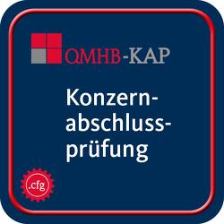 IDW Qualitätsmanagement Handbuch (QMHB) von IDW Verlag