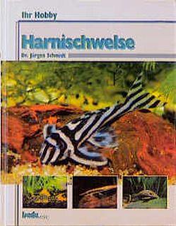 Ihr Hobby Harnischwelse von Schmidt,  Jürgen