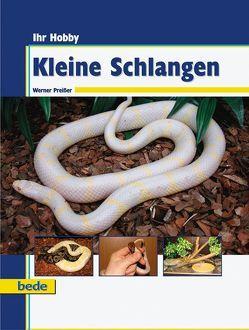 Ihr Hobby Kleine Schlangen von Preißer,  Werner