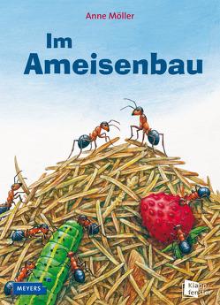Im Ameisenbau von Möller,  Anne