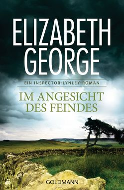 Im Angesicht des Feindes von George,  Elizabeth, Sandberg-Ciletti,  Mechtild