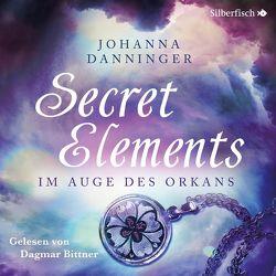 Im Auge des Orkans von Bittner,  Dagmar, Danninger,  Johanna