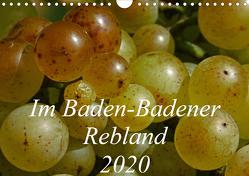 Im Baden-Badener Rebland 2020 (Wandkalender 2020 DIN A4 quer) von Stolzenburg,  Kerstin