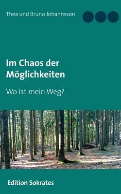 Im Chaos der Möglichkeiten von Johannsson,  Thea und Bruno