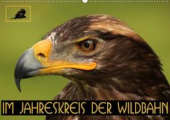 Im Jahreskreis der Wildbahn (Wandkalender 2020 DIN A2 quer) von Stamm,  Dirk