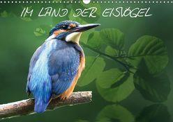 IM LAND DER EISVÖGEL (Wandkalender 2019 DIN A3 quer) von Lehmann,  Heiko