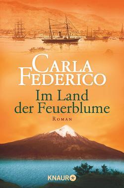 Im Land der Feuerblume von Federico,  Carla