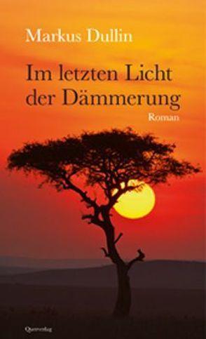 Im letzten Licht der Dämmerung von Dullin,  Markus